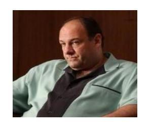 Tony Soprano in Bowling shirt